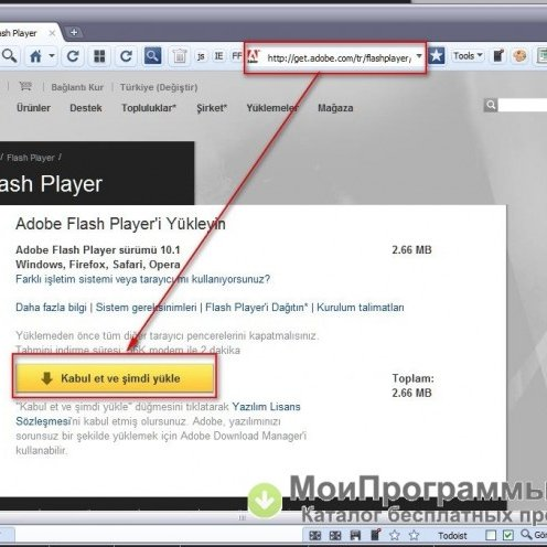 Adobe flash player для google